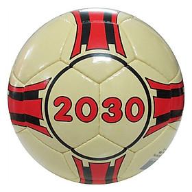 Banh Đá Gerustar 2030