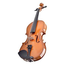 Violin Gỗ Cam 4/4 KBD 34A4-Ca