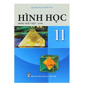 Sách Hình Học Lớp 11 (Song Ngữ Việt - Anh)