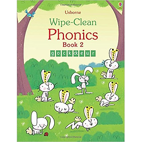 Usborne Wipe-Clean  Phonics Book 2