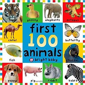 Big Board Books First 100 Animals