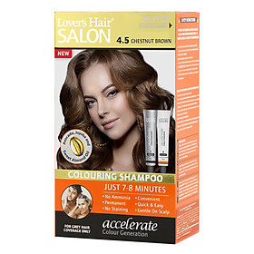 Dầu Gội Nhuộm Tóc Lover's Hair Salon 4.5 Chestnut Brown Wellwisse 9700038 (60ml / Tuýp)