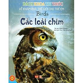 Bách Khoa Tri Thức Về Khám Phá Thế Giới Cho Trẻ Em - Các Loài Chim (Tái Bản)