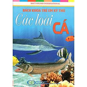 Bách Khoa Trẻ Em Kỳ Thú - Các Loài Cá (39)