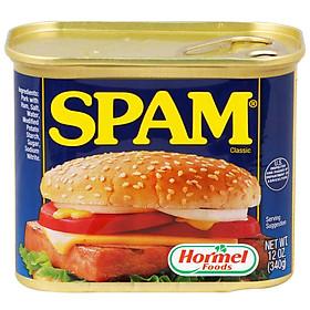 Thịt Hộp Hormel Spam Classic 340g