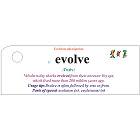 Flashcard Nature Best Quality (T1)