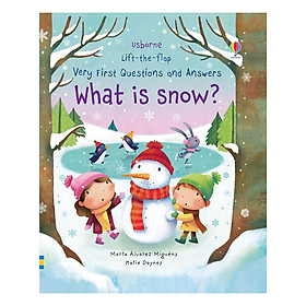 Usborne Lift-The-Flap Very First Questions And Answers: What Is Snow?