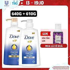 Combo Dove Phục Hồi Hư Tổn Dầu Gội 640g + Kem Xả 610g