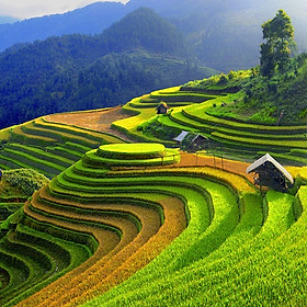 Tour Hà Nội - Sapa 2N1Đ - Khám Phá Vẻ Đẹp Bản Cát - Khu Du Lịch Hàm Rồng - Thưởng Thức Ẩm Thực Sapa - Dành Cho 01 Người
