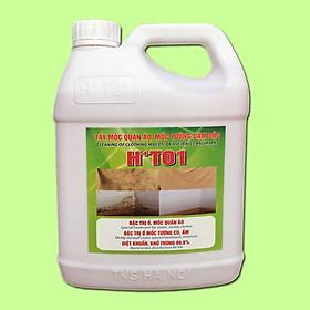 Tẩy mốc HT01 (Tẩy mốc quần áo, mốc tường đậm đặc H+T01-1,8L)