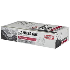 Hình đại diện sản phẩm Hộp 24 gói Gel uống bổ sung năng lượng - Hammer Nutrition Hammer Gel vị dâu rừng HM601H