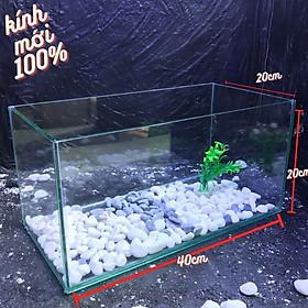 Bể cá mini 40cm COMBO đầy đủ có đèn led siêu dễ thương 3 chế độ sáng