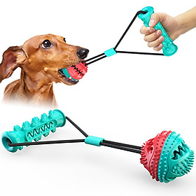 Dog Molar Bite Toy Dog Teeth Cleaning Toy Dog Chew Toys Interactive Dog Toys  for Dog Teeth Cleaning