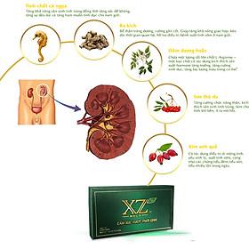 Thực Phẩm Bảo Vệ Sức Khỏe Viên Nang XZ Plus Gold - Tăng cường sinh lý - Hạn chế quá trình mãn dục nam