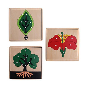 Montessori Botany Material-3 Plant Shape Puzzles for Baby Early Development