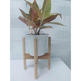Kệ gỗ để chậu hoa (màu tự nhiên), tháo rời