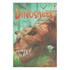 Usborne Beginners: Dinosaurs