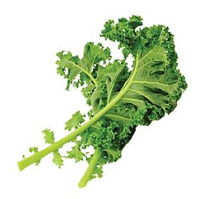 Cải Kale (Cải Xoăn) Đà Lạt Tươi Ngon, Giàu Dinh Dưỡng 500GR - FoodMap