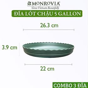 Combo Đĩa3 Đĩa lót chậu nhựa trồng cây MONROVIA 5 GL, chậu trồng cây, chậu cây cảnh mini, để bàn, treo ban công, treo tường, cao cấp, chính hãng thương hiệu MONROVIA