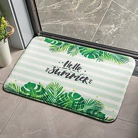 Thảm chùi chân siêu thấm nước kích thước 60x40 cm - Hàng nhập khẩu