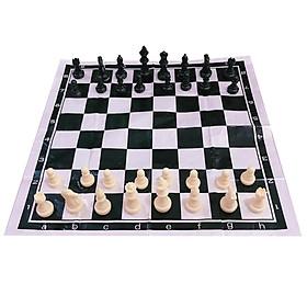 Bộ cờ vua nhựa đen-trắng cao cấp cho bé ( Tặng kèm bàn cờ ni lông 40x40cm)
