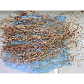 Lũa Rễ Rừng - Trang trí bố cục bể thuỷ sinh bể cá