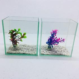Bể cá mini để bàn combo 2 Bể tặng phụ kiện