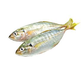 [Chỉ Giao HN] - HSCB - Cá bạc má (500gram)