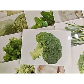 Vegetable Flashcards - Thẻ học tiếng Anh chủ đề rau củ - 20 cards