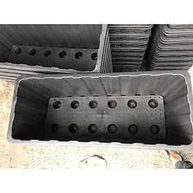 Khay Nhựa Cỡ Lớn Thông Minh Trồng Rau Sạch, Trồng Cây (KT:63x26x30cm)