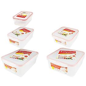 Bộ 05 hộp thực phẩm inomata (700ml + 1300ml + 730ml + 1300ml + 2300ml) hàng nội địa Nhật Bản