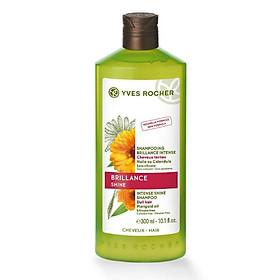 Dầu Gội Tóc Bóng Mượt Intense Shine Shampoo Yves Rocher (300 ml)