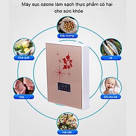 Máy sục ozone - Máy sục khí tạo ozone - Máy sục rau củ quả, thực phẩm làm sạch vi khuẩn, thuốc trừ sâu, các chất hóa học
