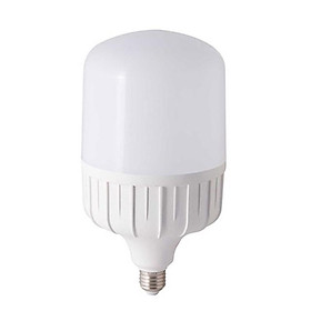 Bóng đèn LED TRỤ 50W Rạng Đông, Chip LED Sam Sung