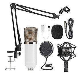 Professional BM700 Condenser Microphone Sound Recording Microphone Mic KTV Singing Studio Recording Kit White