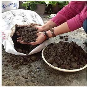 Đất thịt ( đất đen ) đã qua xử lí dùng trồng cây trồng rau