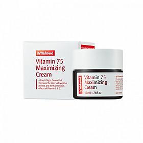 Kem Dưỡng Vitamin 75 Maximizing Cream By Wishtrend