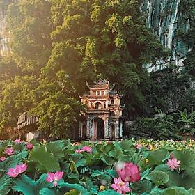 Tour Hoa Lư - Tràng An - Hang Múa 01 Ngày, Gồm Ăn Trưa, Khởi Hành Hàng Ngày & Lễ Tết