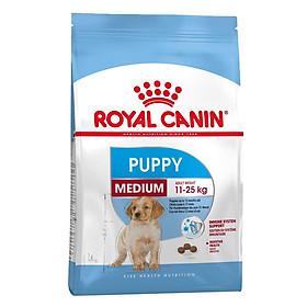 Thức Ăn Cho Chó Royal Canin Medium Puppy (1kg)