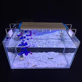 Combo Hồ cá + Lọc nước + Đèn led