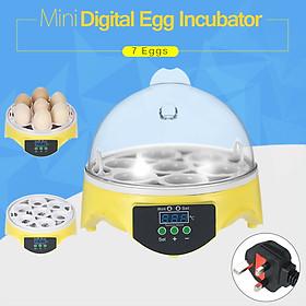 Máy Ấp Trứng Điện Tử Mini Điều Chỉnh Được Nhiệt Độ (7 Ô Đựng Trứng)