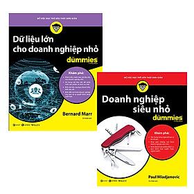 Bộ 2 cuốn Doanh nghiệp siêu nhỏ +Dữ liệu lớn cho doanh nghiệp nhỏ for Dummies