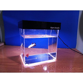 hồ show cá betta 2 ngăn trong suốt + Bộ nắp đèn hồ show cá đi kèm