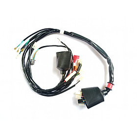 Hình ảnh dây điện sườn dành cho xe wave alpha