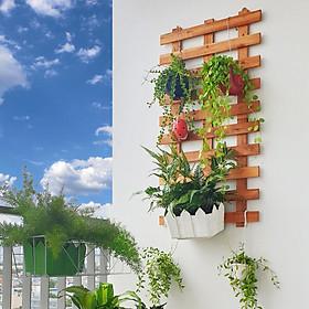 Bộ 2 khung gỗ trang trí treo tường ban công ngoài trời và tường trong nhà - Kute Nest