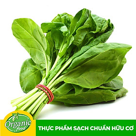 [Chỉ Giao HCM] - Cải bó xôi hữu cơ Organicfood - 300g