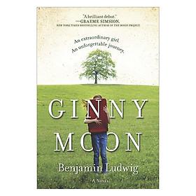 Ginny Moon: A Novel