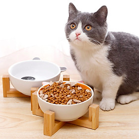 Bát ăn kiểu gấu trúc dễ thương cho mèo