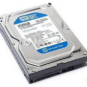Ổ cứng HDD 250G Western SATA - Tặng Cáp SATA