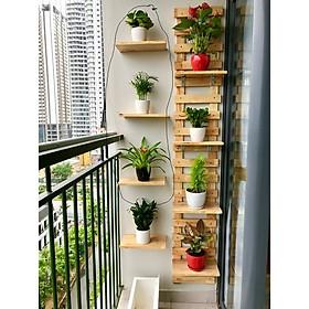 bộ khung trang trí treo tường kệ để cây cảnh ban công chung cư gỗ thông tự nhiên y hình